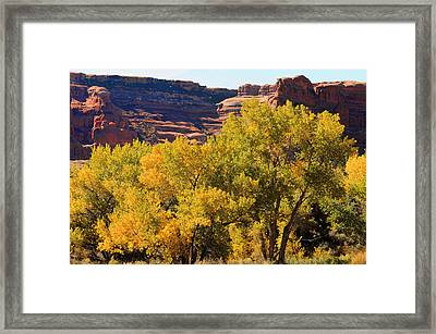 Fall In The Arches Framed Print