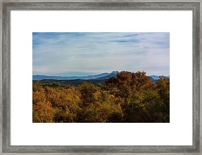 Fall In The Desert Framed Print