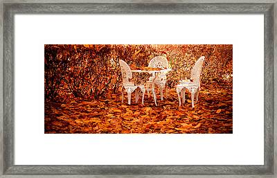 Fall In The Garden Framed Print by Maggie Terlecki