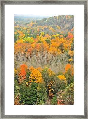 Fall In The High Rollaways Framed Print by Terri Gostola