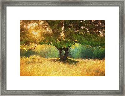 Fall In The Meadow Framed Print