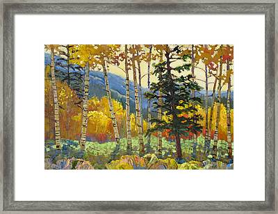 Fall In The San Juans Framed Print by Susan McCullough
