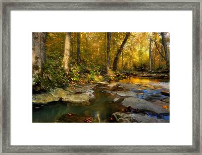 Fall In The Shawnee National Forest Framed Print by Donna Caplinger