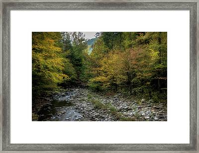 Fall In The Smokies Framed Print by Mike Eingle