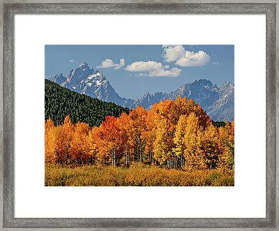 Fall In The Tetons Framed Print