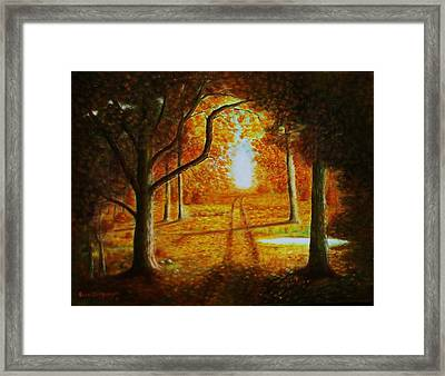 Fall In The Woods Framed Print by Gene Gregory