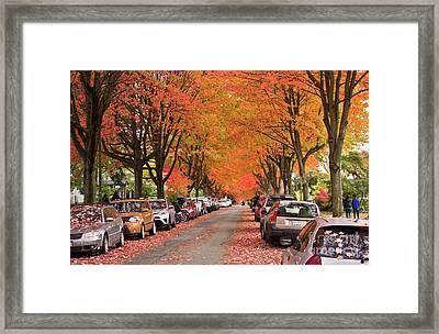 Fall In Vancouver 2017 1 Framed Print