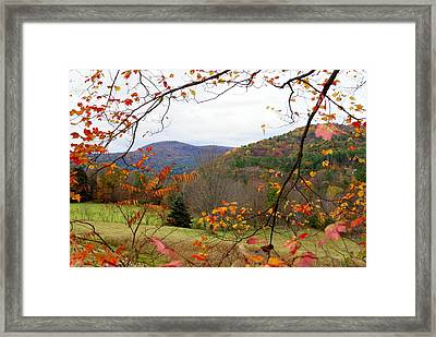 Fall In Vermont Framed Print by Lois Lepisto