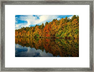 Fall Into Colors Framed Print by Karol Livote