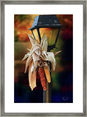 Fall Is Coming Framed Print by Theresa Campbell