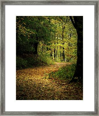 Fall Is Just Around The Corner Framed Print