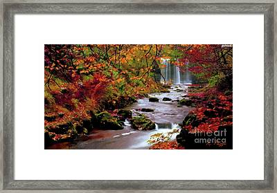 Fall It's Here Framed Print