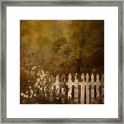 Fall Framed Print by Jeff Burgess