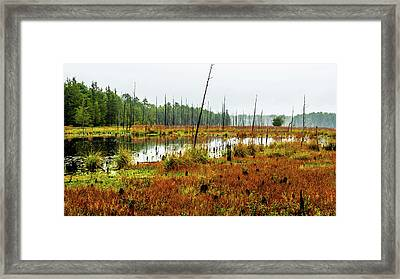 Fall Lake Landscape Framed Print by Louis Dallara