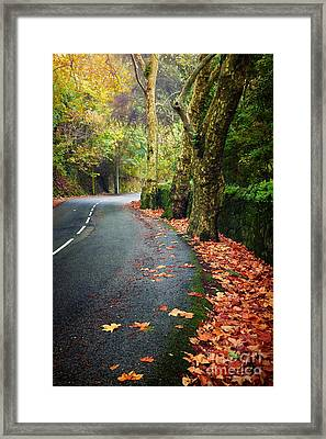 Fall Landscape Framed Print by Carlos Caetano