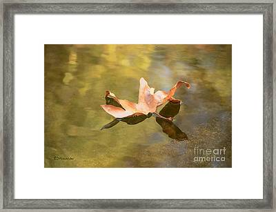 Fall Leaf Floating Framed Print