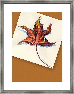 Fall Leaf Framed Print