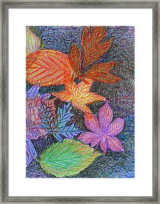 Fall Leave Collage Framed Print by Cassandra Donnelly