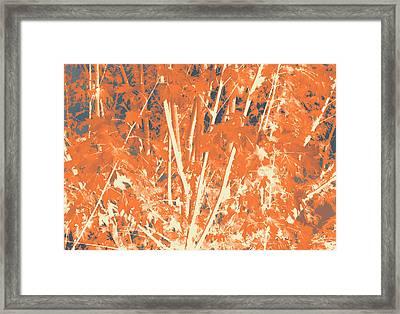 Fall Leaves #3 Framed Print