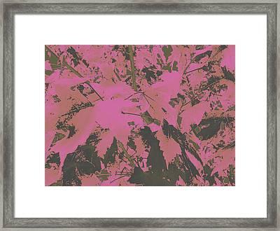 Fall Leaves #6 Framed Print