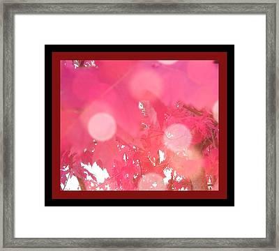 Fall Leaves #8 Framed Print