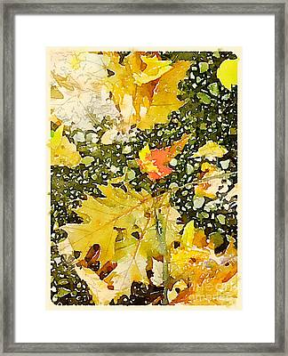 Fall Leaves And Stones Framed Print by Janet Dodrill