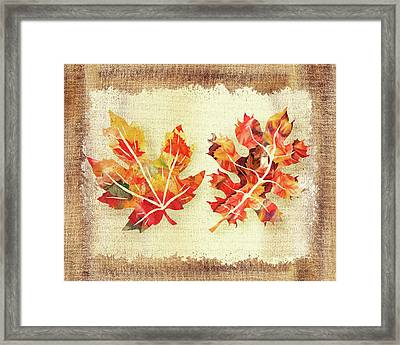Framed Print featuring the painting Fall Leaves Collection by Irina Sztukowski