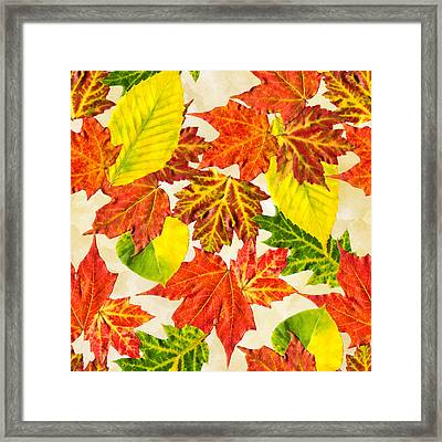 Framed Print featuring the mixed media Fall Leaves Pattern by Christina Rollo