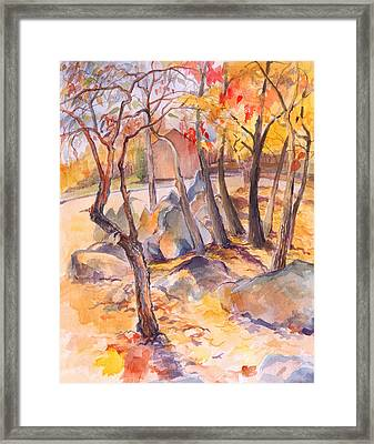 Fall Light 2 Framed Print by Nancy Watson