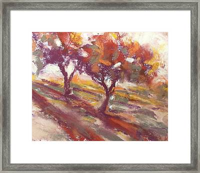 Fall Light Framed Print