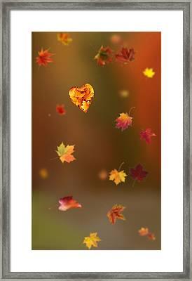 Fall Love Framed Print