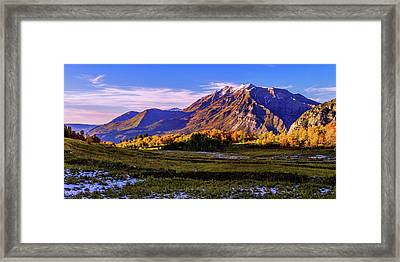 Fall Meadow Framed Print by Chad Dutson