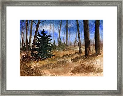 Fall Meadow Framed Print