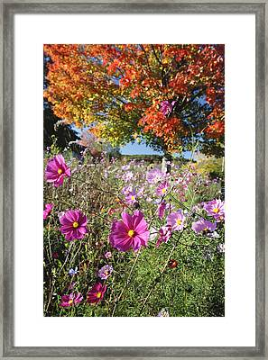 Fall Meadow With Wildfowers Framed Print by George Oze