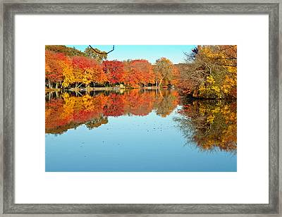 Fall Morning In East Lyme 1 Framed Print by Gerald Mitchell