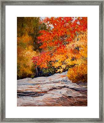 Fall Mountain Foliage Framed Print