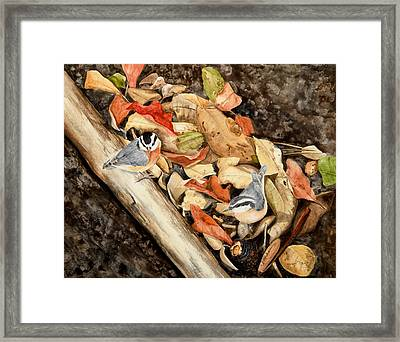 Fall Nuthatch Pair Framed Print