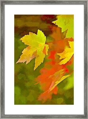 Fall Of Leaf Framed Print