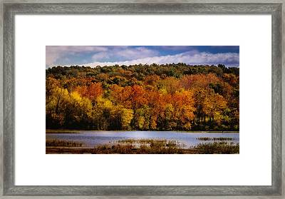 Fall On Springfield Lake Framed Print