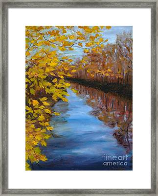 Fall On The Delaware Canal Framed Print by Cindy Roesinger