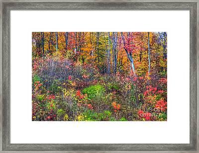 Fall On The Floor Framed Print by Robert Pearson