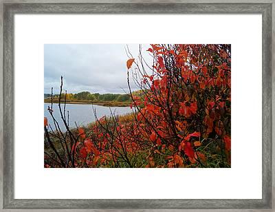 Fall On The Lake Framed Print