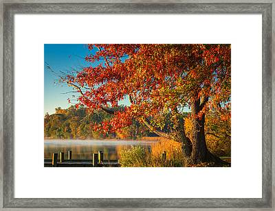 Framed Print featuring the photograph Fall On The Patuxent by Cindy Lark Hartman