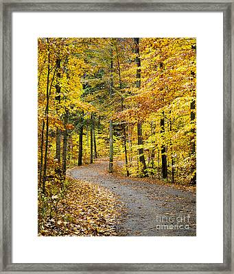 Fall On The Road To School Lake Framed Print