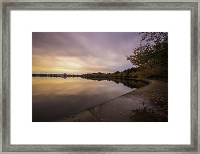 Fall On The Tidal Basin Framed Print
