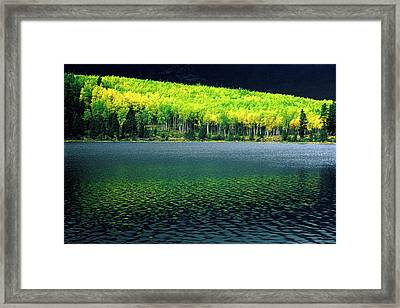 Fall Out Framed Print