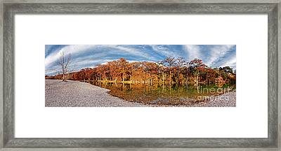 Fall Panorama Of Bald Cypress Along The Frio River At Garner State Park - Texas Hill Country Framed Print by Silvio Ligutti
