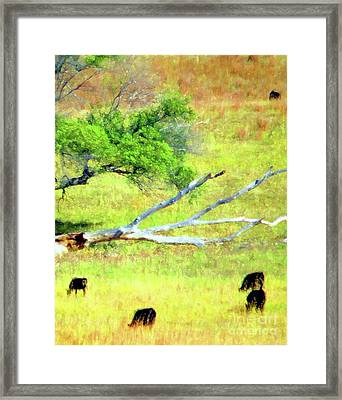 Fall Pastures Framed Print by Desiree Paquette