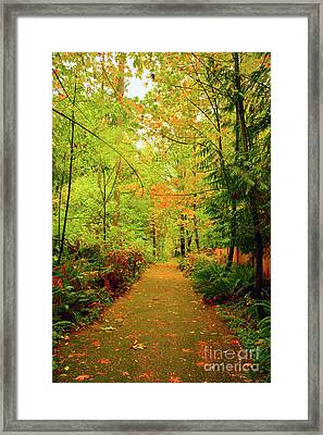Fall Path Too Framed Print