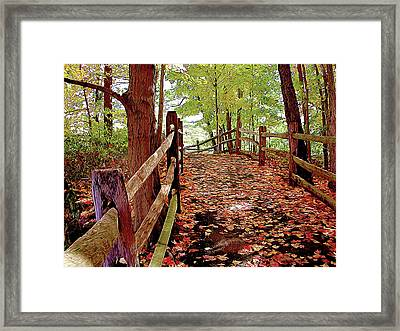 Fall Pathway Framed Print